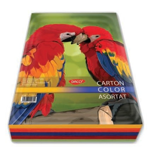 Carton color 240 G/MP A4, 10 Culori Asortat CN240