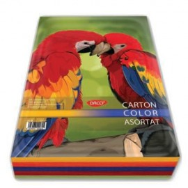 Carton color 160 G/MP A4, 5 Culori Asortat