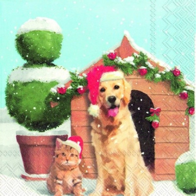 Servetel IHR Xmas dog and cat